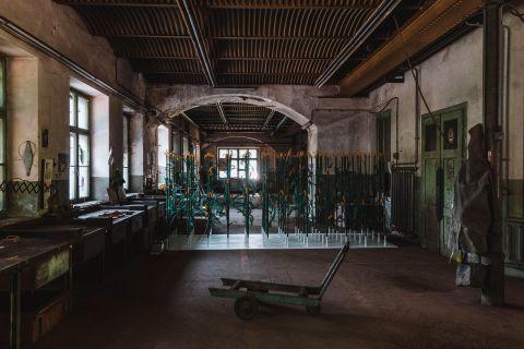 CORN FIELD, electrified installation, 2020 foto Mitja Kuret